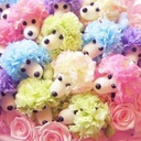 yuko050504さんのプロフィール画像