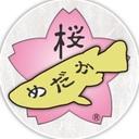 sakura_medaka_kobeさんのプロフィール画像