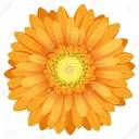 ukanmadamさんのプロフィール画像
